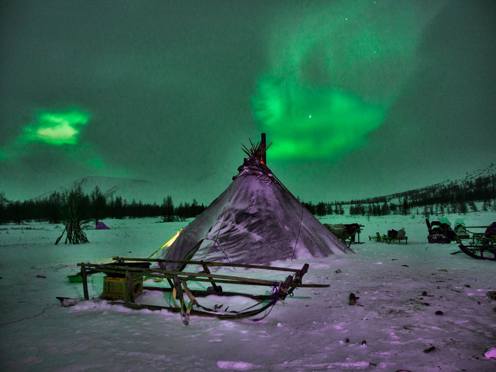 Northern Lights and Nenets Plague
