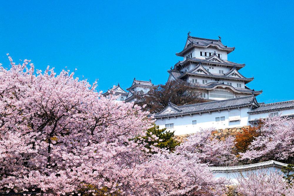 Храм Исе-Дзингу, Япония