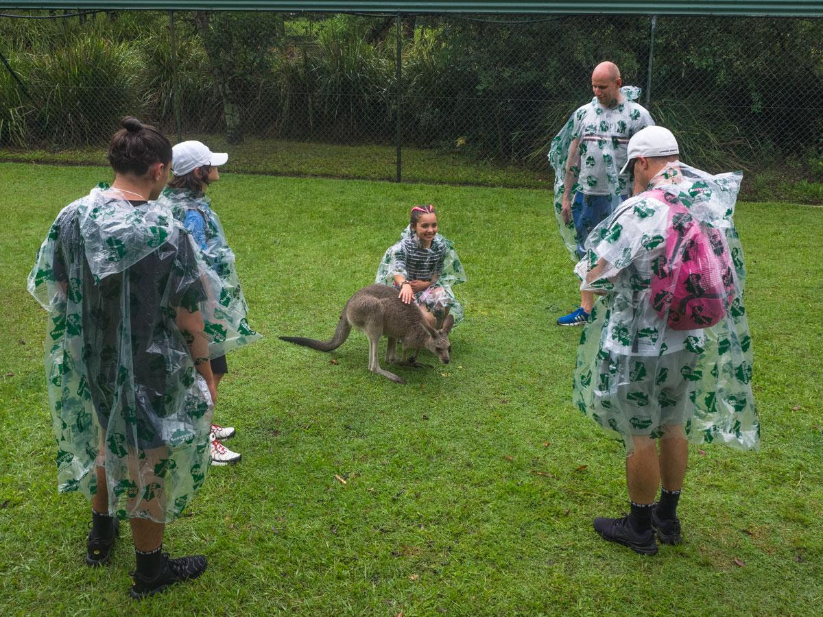 Австралийский зоопарк Боба Ирвина