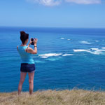 New Zealand tour. Cape Reinga (the northernmost point of New Zealand), the second visit